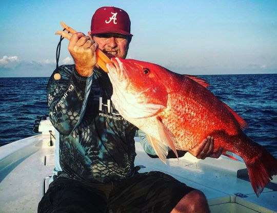 Red Snapper Fishing Charters in Dauphin Island