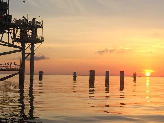 orange beach offshore deep sea fishing charter
